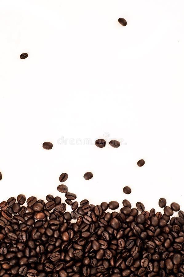 Geroosterde de bodemgrens van de Koffieboon op witte achtergrond royalty-vrije stock afbeelding