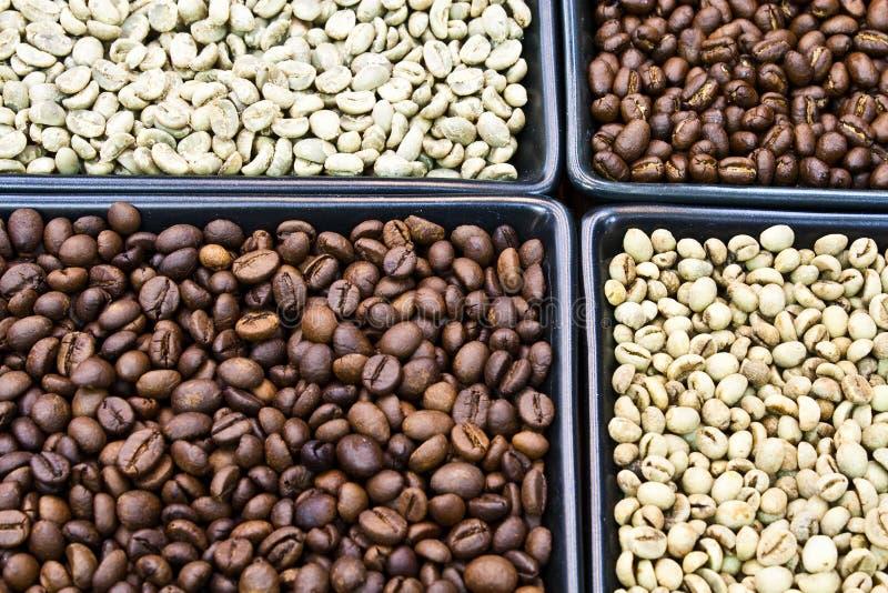 Geroosterde en groene koffieboon stock fotografie