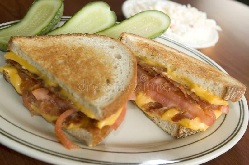 Geroosterde kaassandwich stock foto