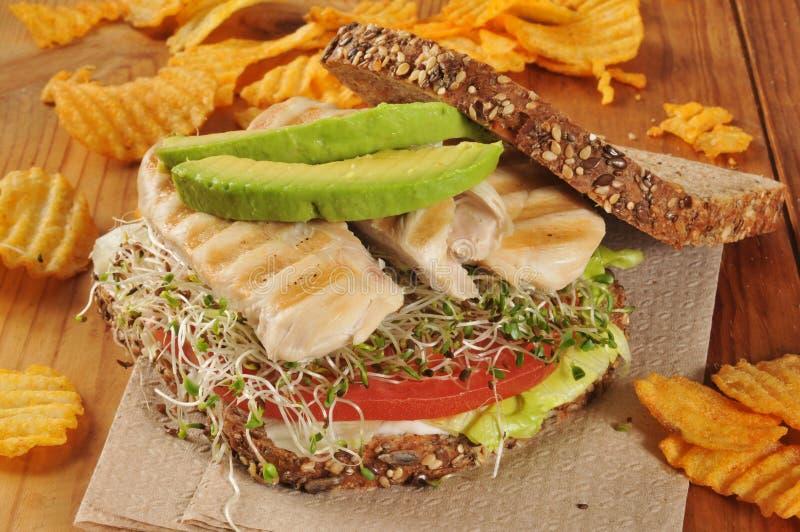 Download Geroosterde Kip En Spruitensandwich Stock Foto - Afbeelding bestaande uit spruiten, geheel: 39116580