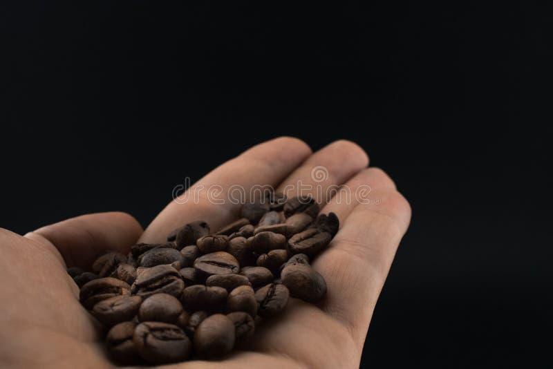Geroosterde koffiebonen in een hand stock fotografie
