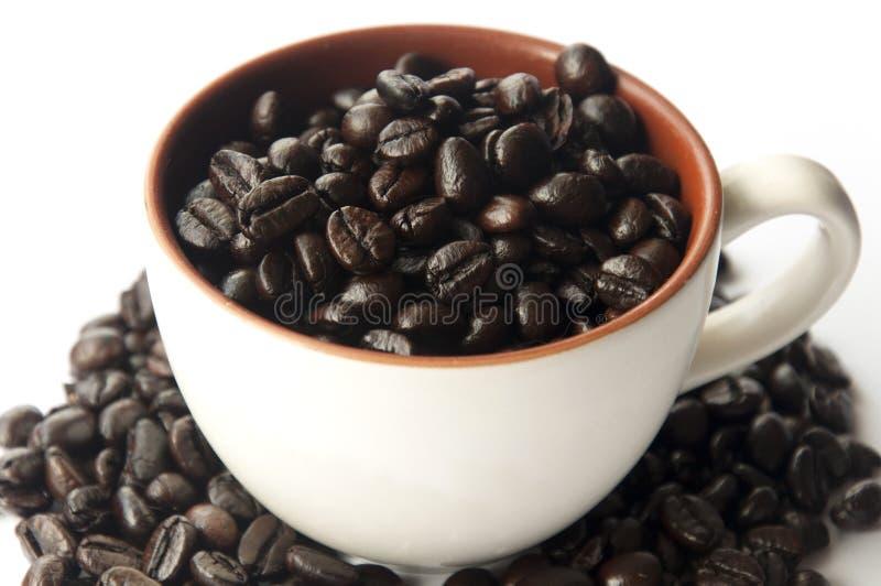 Geroosterde koffiebonen in een mok stock afbeelding