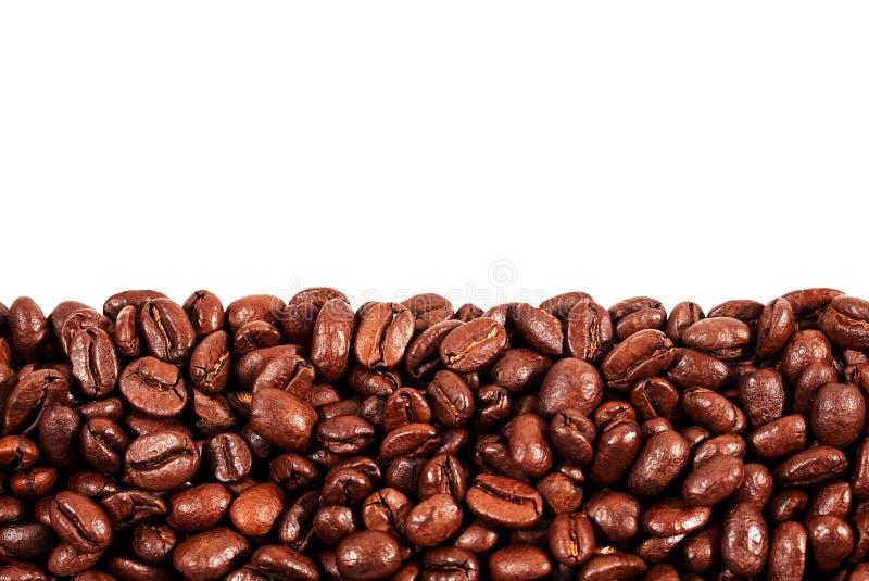 Geroosterde koffiebonen met exemplaarruimte op de bovenkant stock fotografie