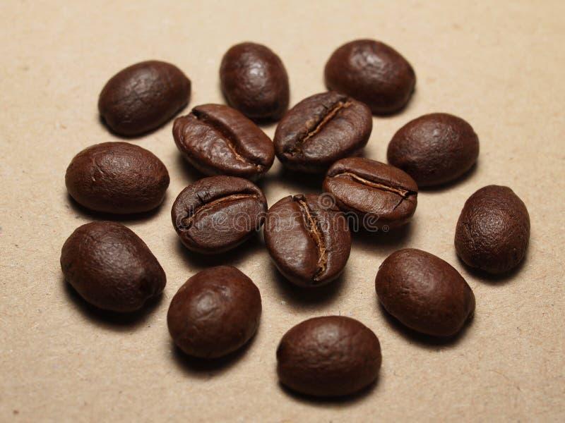 Geroosterde Koffiebonen op document textuur stock afbeeldingen