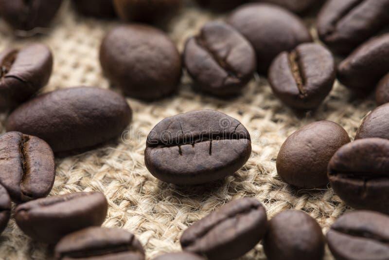 Geroosterde koffieboon stock foto