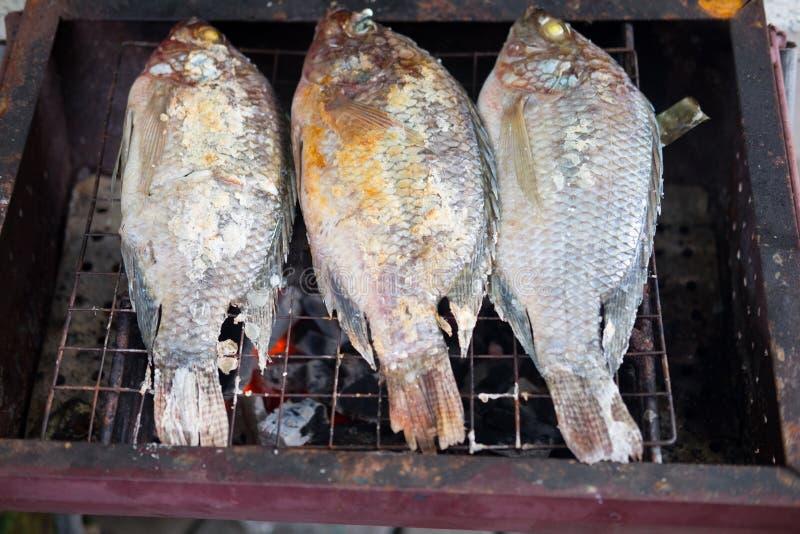Geroosterde vissen met zoute korst en kruid bij de grill stock fotografie
