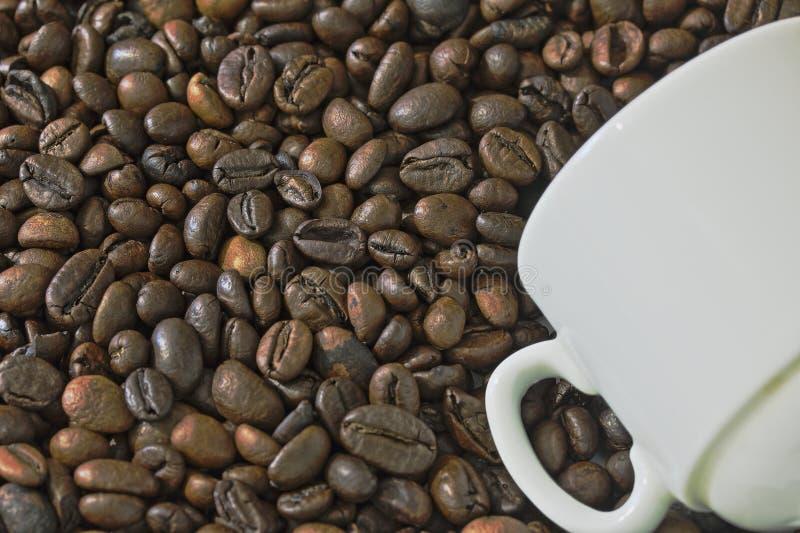 Geroosterde zwarte koffiebonen en witte kop royalty-vrije stock afbeeldingen