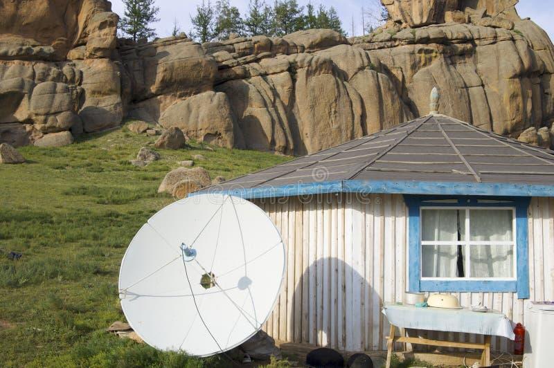 Gers mongol photographie stock libre de droits