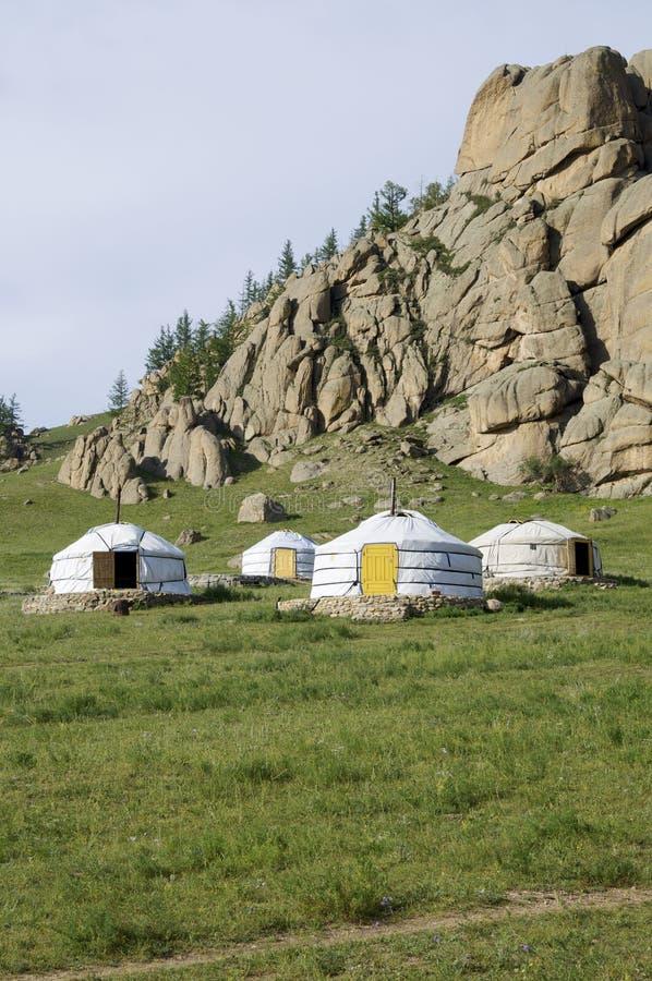 Gers mongol photo libre de droits
