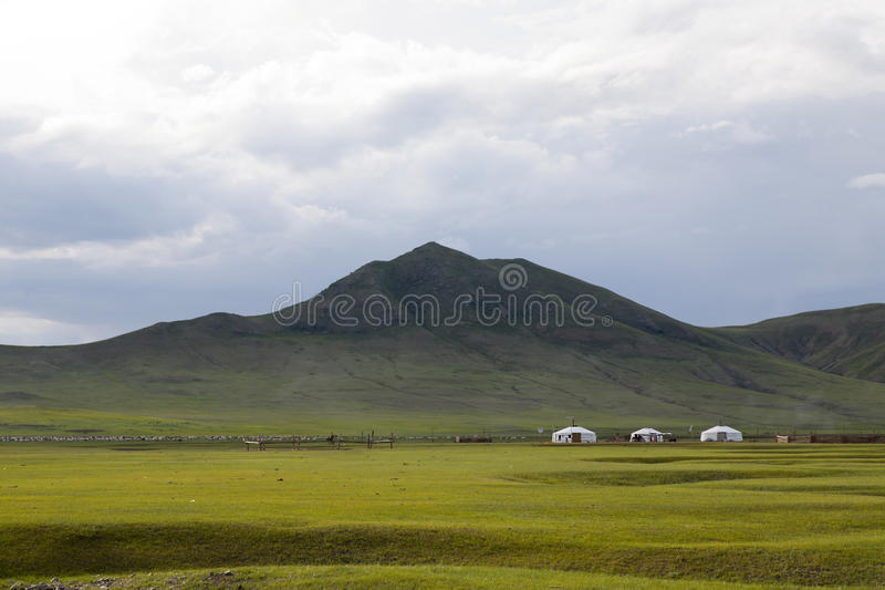 Gers on the Steppes stock image