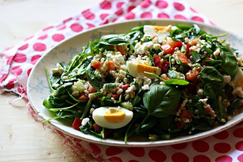 Gerstensalat mit Gemüse stockbild