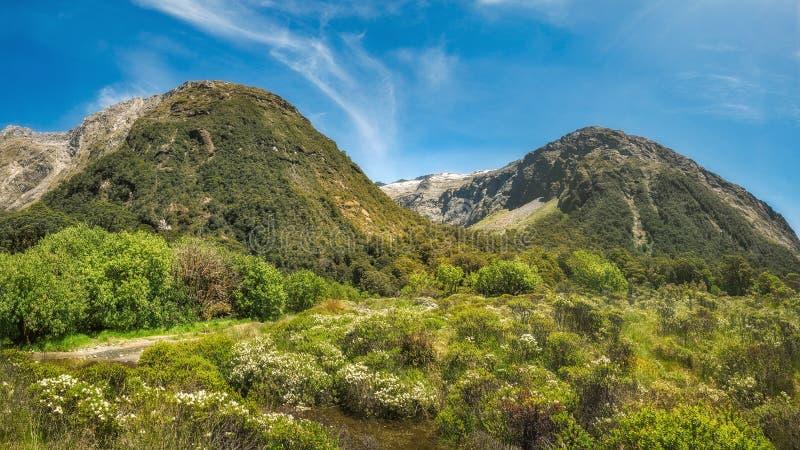 Gertrude Valley View op de manier aan Milford-Geluid in Nieuw Zeeland stock fotografie