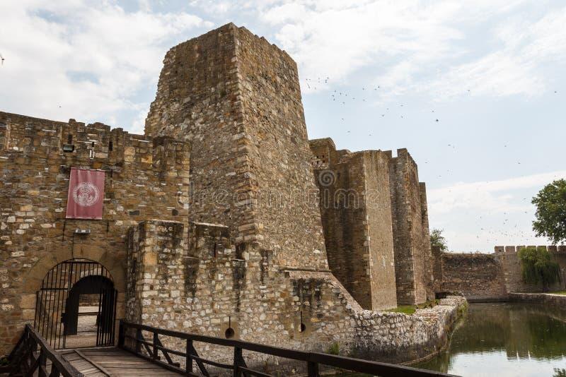 Geruïneerde middeleeuwse vesting in Smederevo stock afbeelding