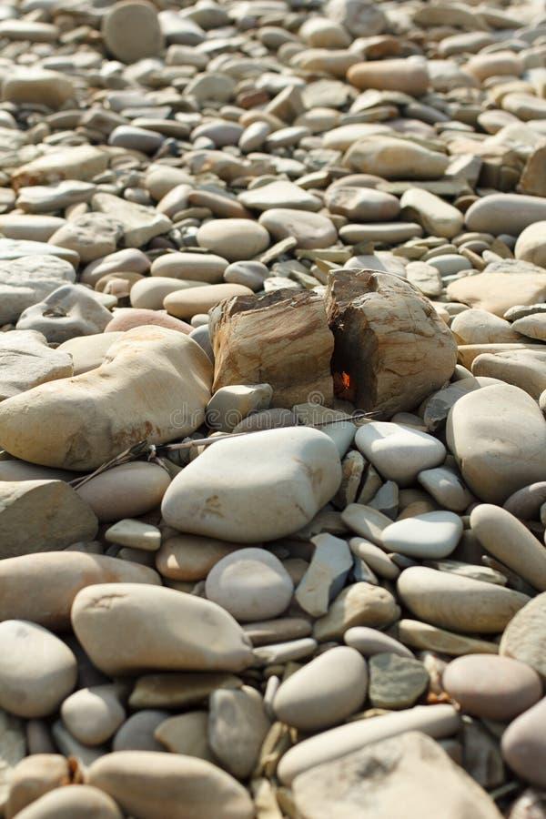 Gerundete Kiesel auf dem Strand Beige Kiesel auf dem Strand und der Steinspalte zur Hälfte lizenzfreie stockfotos