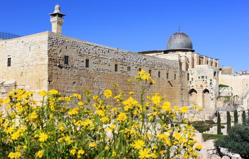 Gerusalemme di fioritura, Israele immagine stock libera da diritti