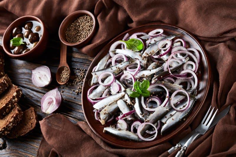 Gesalzter Sprottensalat mit Ringen der roten Zwiebel auf einer Töpferwarenplatte auf einem alten rustikalen Holztisch mit Oliven  lizenzfreie stockfotografie