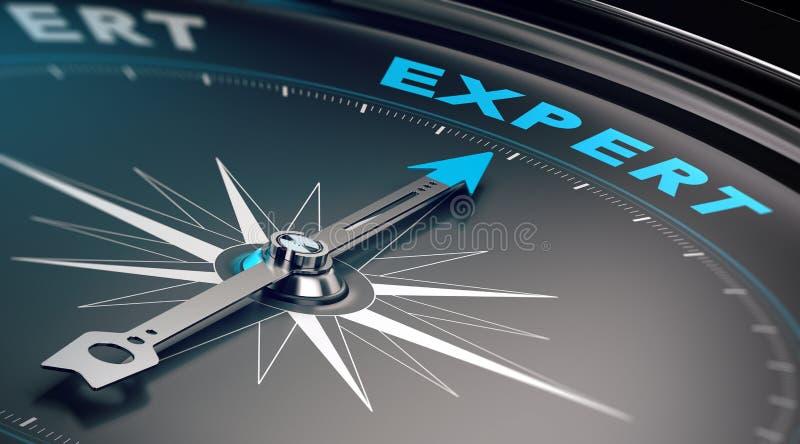 Geschäfts-Experte, Ratekonzept stock abbildung