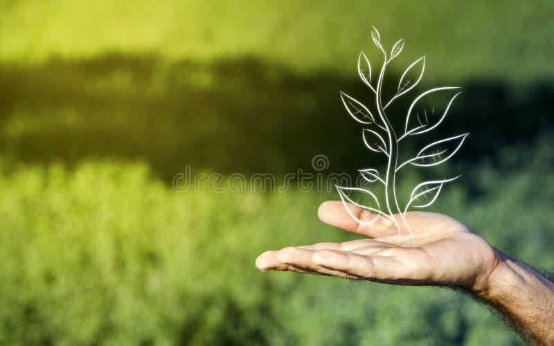 Geschäfts- und Naturmetapher lizenzfreies stockfoto