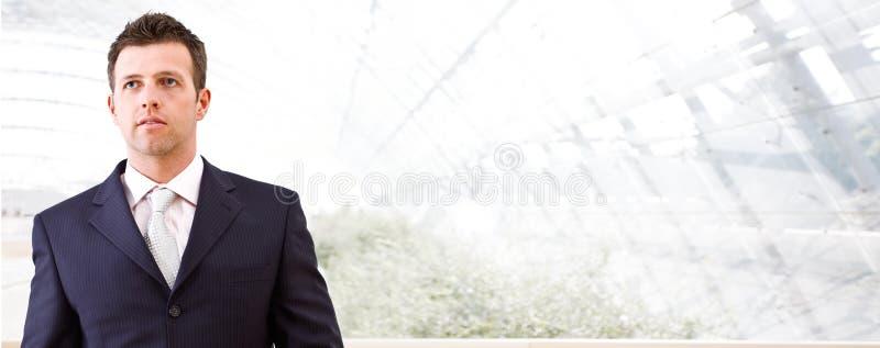Geschäftsfahne - Mittlererwachsener Geschäftsmann lizenzfreie stockfotos