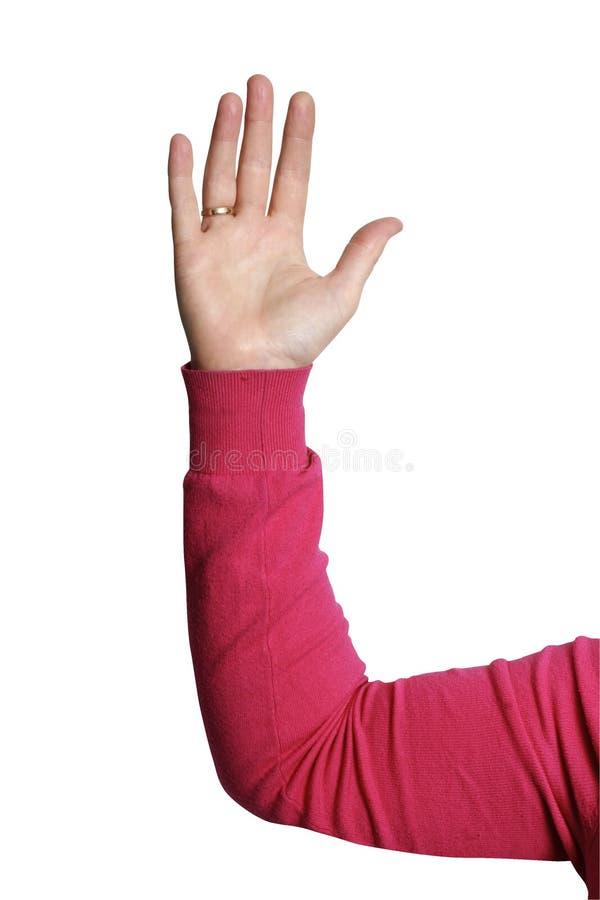 Geschäftsfrau, die ihre Hand anhebt stockfotos
