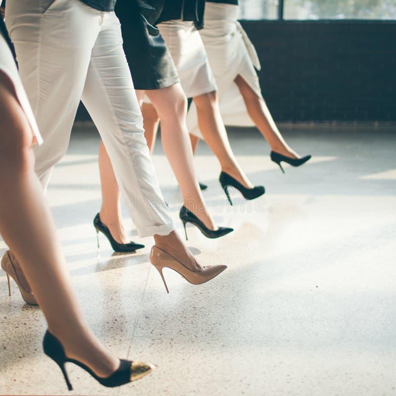 Geschäftshaifischfrauen-Büroarbeitskonzept lizenzfreies stockbild
