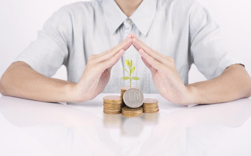 Geschäftshandschutzgeld mit Baumkonzept-Wachstumsfinanzierung lizenzfreie stockfotos