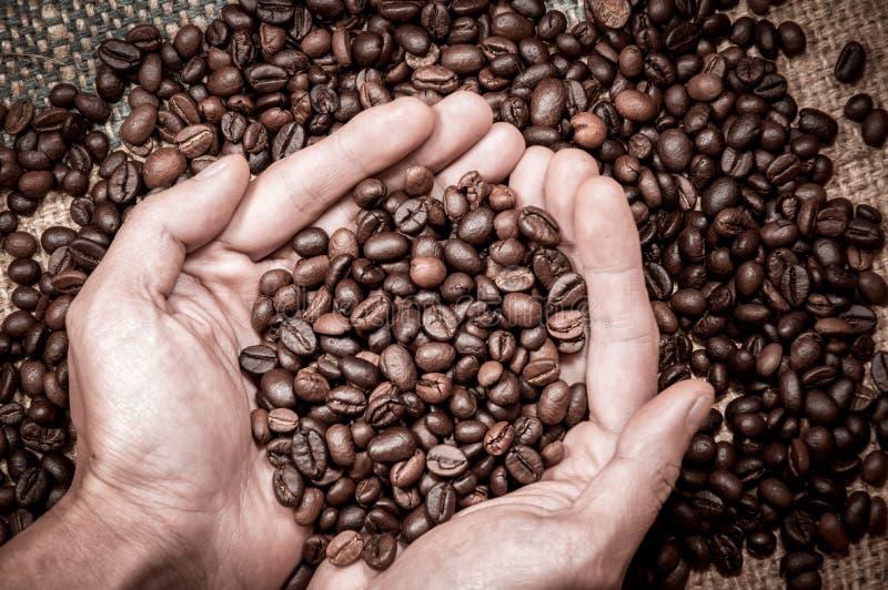 Geschäftsideen für Kaffee oder Agrarprodukte lizenzfreies stockbild