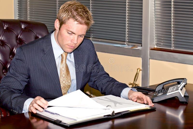 Geschäftsmann bei der Arbeit. lizenzfreie stockfotografie