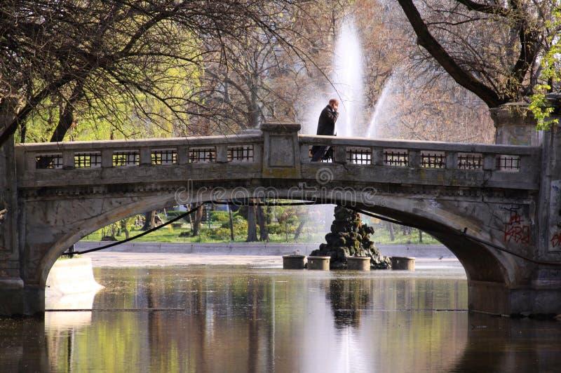 Geschäftsmann, der auf Brücke im Park geht lizenzfreies stockfoto