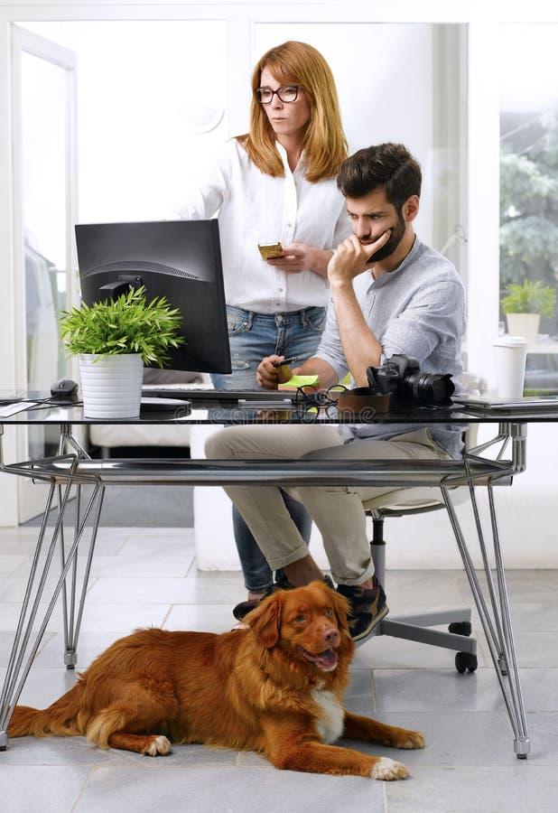 Geschäftsmann, der am Haustier-freundlichen Arbeitsplatz arbeitet lizenzfreie stockbilder