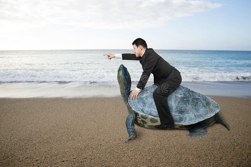 Geschäftsmannreitschildkröte und Anzeige mit dem Finger an Sand bea lizenzfreies stockfoto