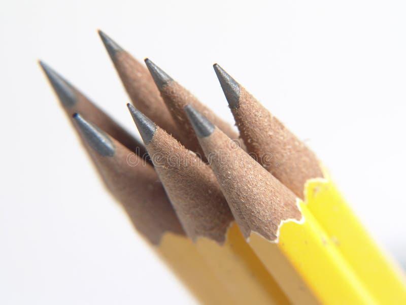 Geschärfte Bleistifte lizenzfreie stockbilder
