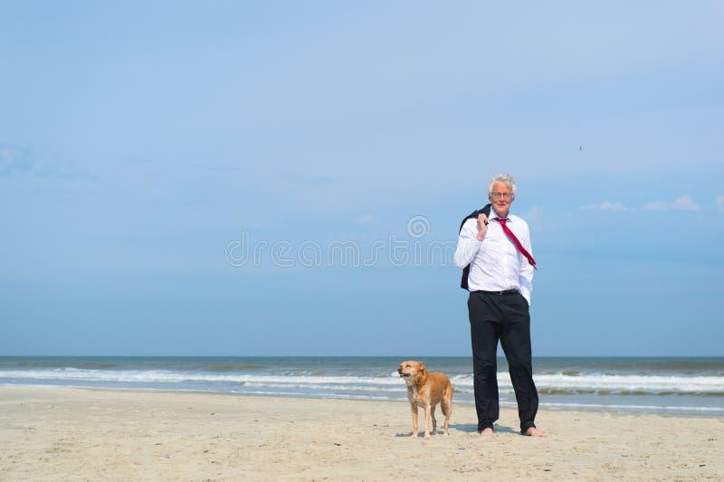 Gesch?ftsmann mit Hund am Strand stockfotografie