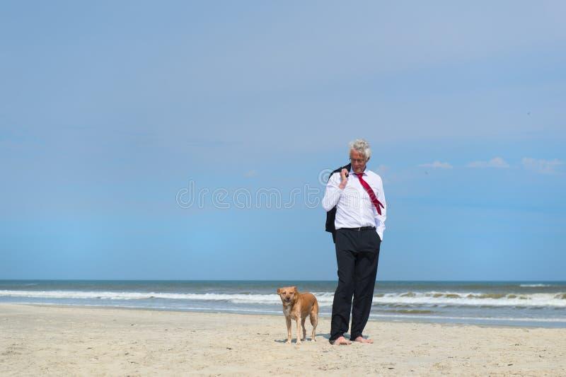 Gesch?ftsmann mit Hund am Strand lizenzfreie stockfotos