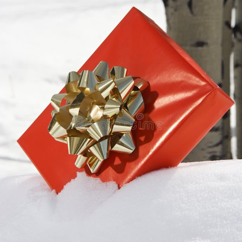 Geschenk im Schnee. lizenzfreie stockbilder