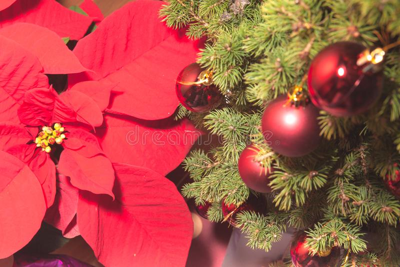 Geschenke unter dem Weihnachtsbaum mit Flitter und verschiedenen Dekorationen stockfotos