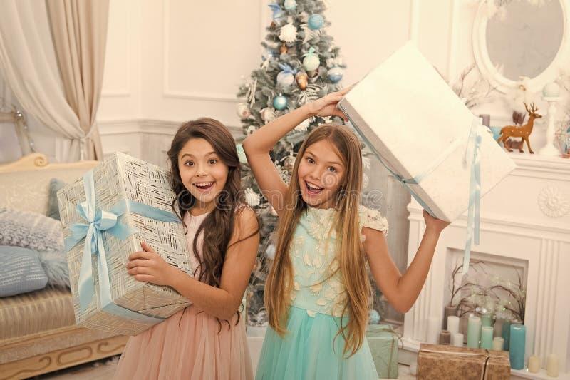 Geschenken voor kerstcadeaus leveren Gefeliciteerd met hun dichtstbijzijnde feestdag gelukkig nieuwjaar vrolijke meisjes zusters royalty-vrije stock foto's