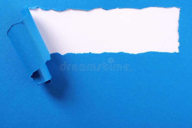 Gescheurd blauw document van de strook gekruld rand wit kader als achtergrond stock afbeeldingen