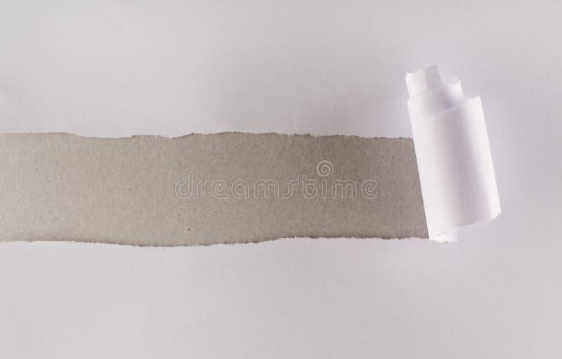 Gescheurd Witboek het openbaren van grijze kartonlaag stock afbeeldingen
