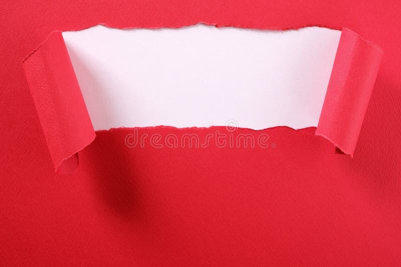Gescheurde rode document strook gekrulde rand die wit open gordijn openbaren als achtergrond royalty-vrije stock foto