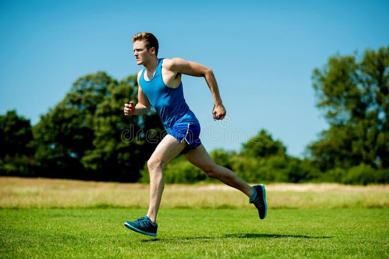 Geschikte Atleet Die Hard Op Een Zonnige Dag Lopen Royalty-vrije Stock Afbeeldingen