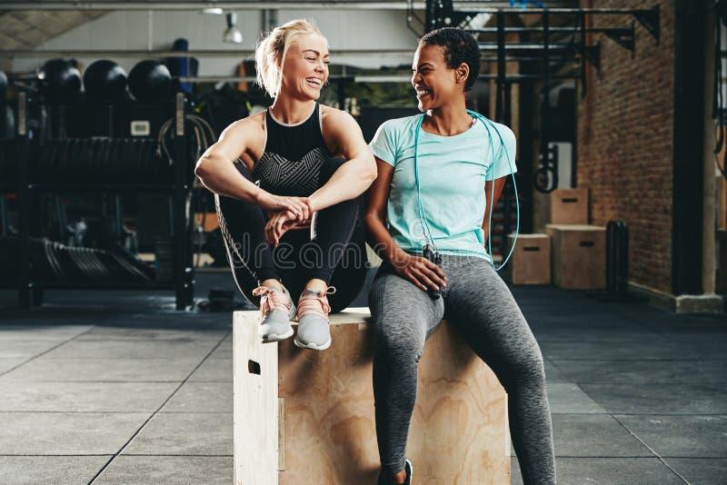 Geschikte jonge vrouwelijke vrienden die samen na een gymnastiektraining lachen stock foto