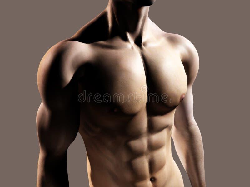 Geschikte mens die borst en abs toont stock illustratie
