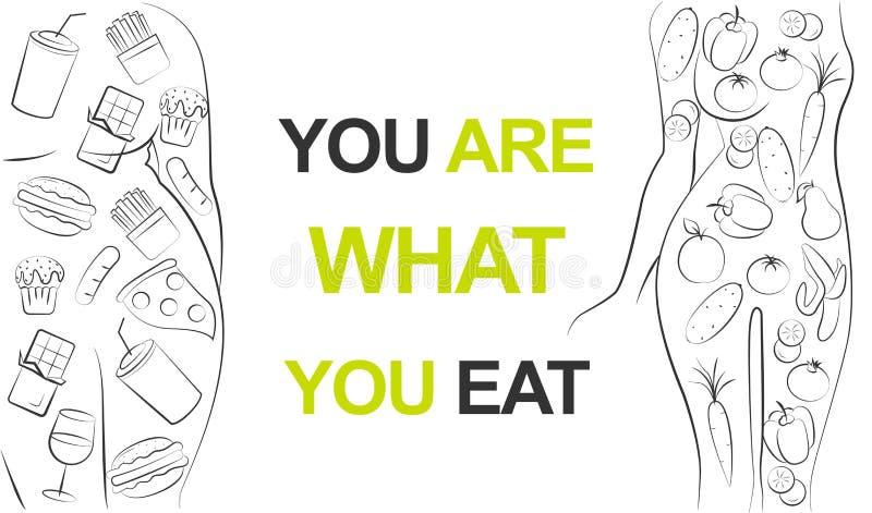 Geschikte vrouw gezond groen groentenvoedsel eten of vet meisje die snel voedsel eten Dieet of het eten van ongezonde probleemvra vector illustratie