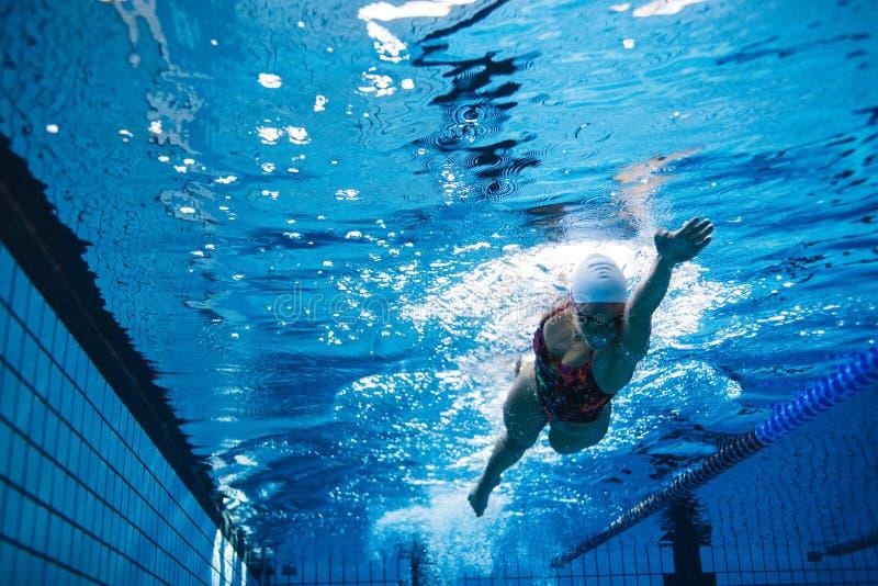 Geschikte vrouwelijke atleet die in pool zwemmen royalty-vrije stock foto