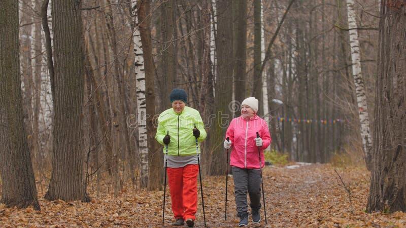 Geschiktheid voor bejaarden in de herfstpark - het noordse lopen onder de herfstpark royalty-vrije stock fotografie