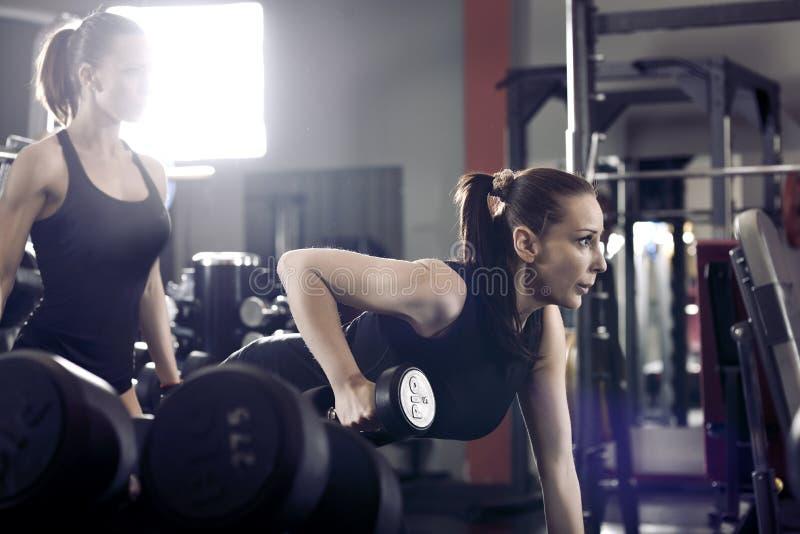 Geschiktheids jonge sexy vrouw in de gymnastiek die oefeningen met dumbbe doen stock fotografie