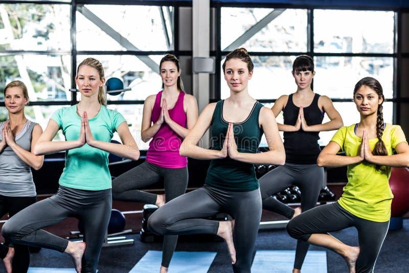 Geschiktheidsklasse die yogaoefeningen doen royalty-vrije stock afbeeldingen