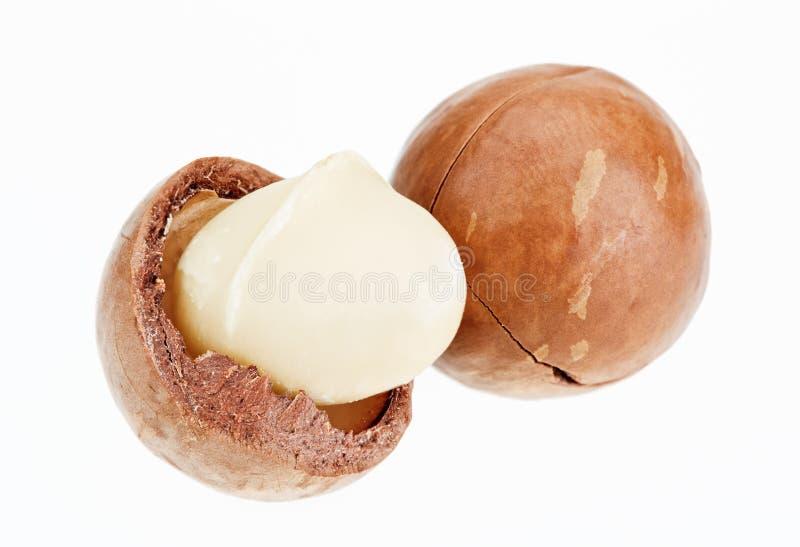 Geschilde en unshelled macadamia noten stock fotografie