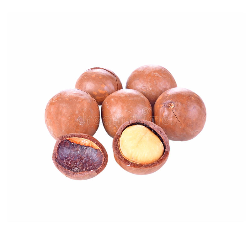 Geschilde en unshelled macadamia noten op witte achtergrond stock afbeeldingen